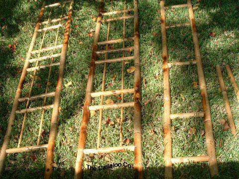 Bamboo Arbor Trellis