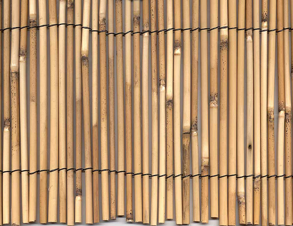 Bamboo Reed Fencing Home Depot Hog Wire Fence Home Depot View